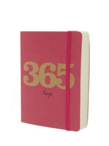 Go Sationery 365 Cerise A6 2016 full year diary.