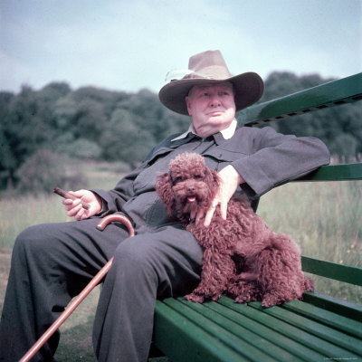 Winston Churchill and his miniature poodle