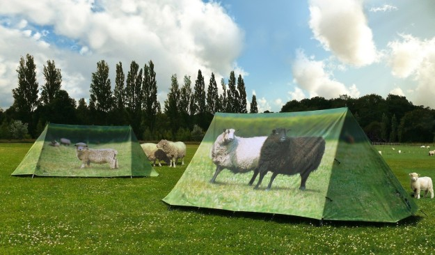 Fieldcandy Animal Farm tent. Made in England.