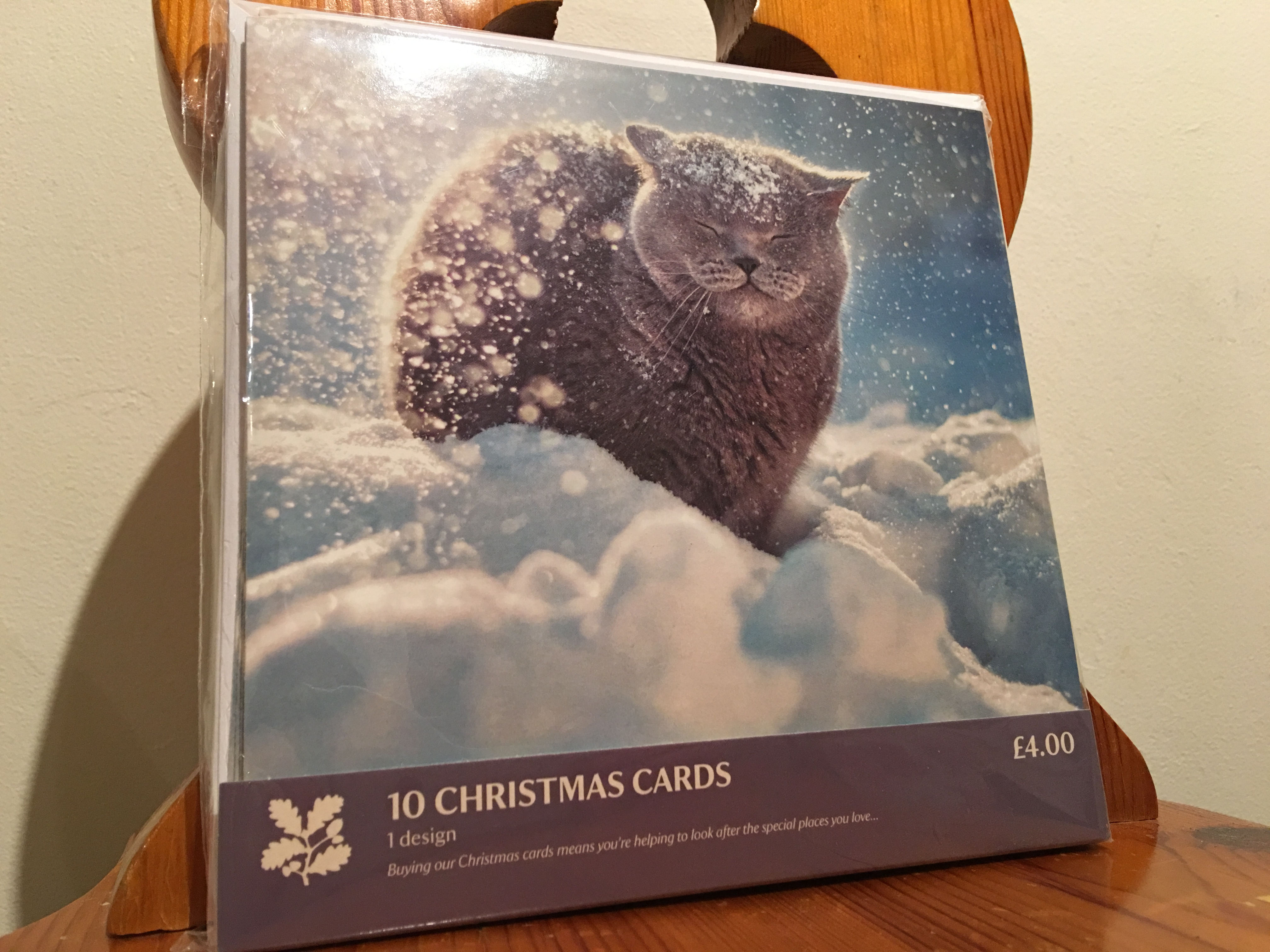 Greetings cards birthday cards christmas cards blank cards national trust british short hair cat in the snow christmas cards 2015 made in the kristyandbryce Gallery