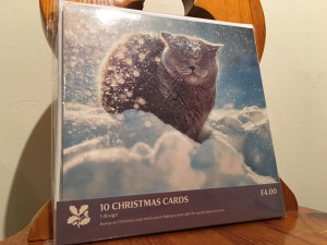National Trust British Short Hair cat in the snow Christmas Cards 2015. Made in the UK.