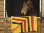 Hainsworth equestrian blanket