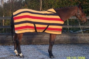 Fitted Witney Horse Blanket by Friday Fox. Made in England.
