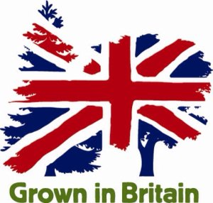 Grown in Britain logo. Grown in Britain promotes active management to create a more sustainable future for British woodlands.